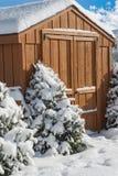 Árboles de navidad en nieve Imagenes de archivo