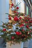 Árboles de navidad que adornan la calle principal de Moscú Imagen de archivo libre de regalías