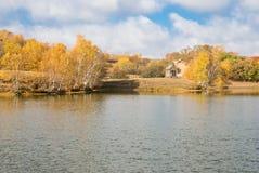 Árboles de oro por el lago tranquilo Fotos de archivo