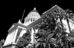 Árboles de palmas sobre el edificio del capitolio Foto de archivo libre de regalías