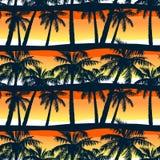 Árboles de palmas tropicales en la puesta del sol en un modelo inconsútil Foto de archivo