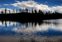 Árboles de pino silueteados en el lago river Fotografía de archivo libre de regalías