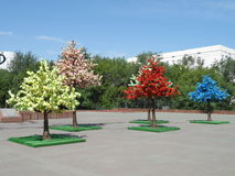 Árboles decorativos en cuadrado Imagen de archivo libre de regalías