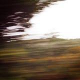 Árboles Defocused vistos a través de un parabrisas del coche Imagen de archivo
