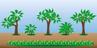 Árboles del activo del juego Imagen de archivo