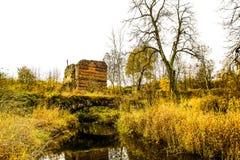 Árboles del amarillo del paisaje del otoño, hierba y puente viejo sobre el río Imagen de archivo