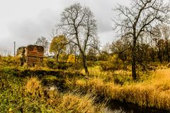 Árboles del amarillo del paisaje del otoño, hierba y puente viejo sobre el río Fotos de archivo