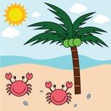 Árboles del cangrejo y de coco de la playa Imagenes de archivo