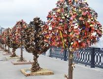 Árboles del hierro con las cerraduras Fotografía de archivo