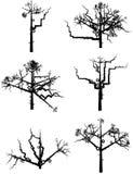 Árboles del invierno stock de ilustración