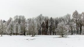 Árboles del invierno de la capilla del borde del camino Fotografía de archivo