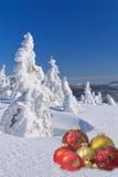 Árboles del invierno y bolas de la Navidad Imágenes de archivo libres de regalías
