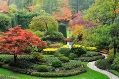 Árboles del otoño Imagenes de archivo