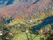 Árboles del otoño de las montañas Fotografía de archivo