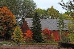 Árboles del otoño en el parque Foto de archivo