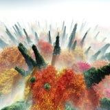 Árboles del otoño en la opinión de la niebla desde arriba Imágenes de archivo libres de regalías
