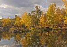 Árboles del otoño en parque en la orilla de la charca Fotografía de archivo