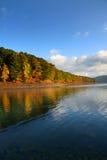 Árboles del otoño a lo largo de la orilla del lago Fotos de archivo libres de regalías