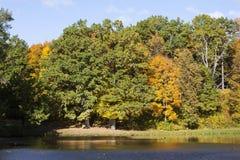 Árboles del otoño a lo largo del lago Foto de archivo libre de regalías