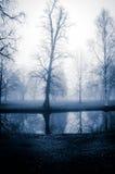 Árboles del otoño por el agua Imagen de archivo libre de regalías