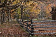 Árboles del otoño y cerca rústica imágenes de archivo libres de regalías