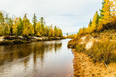 Árboles del otoño y el río Foto de archivo
