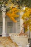 Árboles del otoño y la casa vieja fotografía de archivo libre de regalías