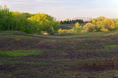 Árboles del prado y rastro de Battle Creek Imagen de archivo libre de regalías