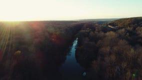 Árboles del río y del otoño y barco de navegación durante la puesta del sol, vídeo aéreo del abejón metrajes