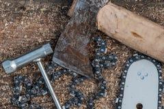 Árboles del sawing fotos de archivo