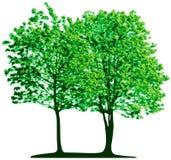 Árboles del vector stock de ilustración