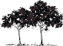 Árboles del vector Imagen de archivo libre de regalías