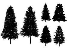 Árboles del vector aislados en un fondo blanco Imagen de archivo libre de regalías