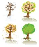 Árboles del vector de cuatro estaciones stock de ilustración