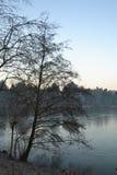 Árboles desnudos del invierno que pasan por alto el lago Fotos de archivo