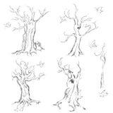 Árboles dibujados mano Fotografía de archivo