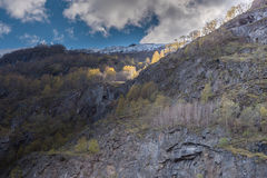árboles e iluminación en el Mountain View Fotos de archivo libres de regalías