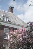 Árboles, edificio y nubes rosados Fotografía de archivo