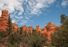 Árboles en Bryce Canyon Fotos de archivo