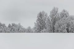 Árboles en campo vacío con nieve en el invierno Foto de archivo