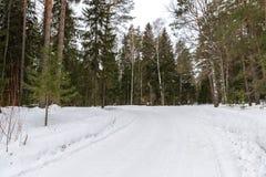 Árboles en carretera nacional de la escarcha Imágenes de archivo libres de regalías