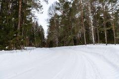 Árboles en carretera nacional de la escarcha Foto de archivo