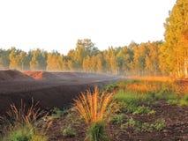 Árboles en colores de la salida del sol, Lituania del otoño Foto de archivo