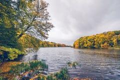Árboles en colores del otoño alrededor de un lago Fotos de archivo libres de regalías