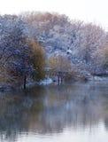 Árboles en el lago en invierno Imagen de archivo libre de regalías