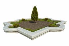 Árboles en el parque Imagenes de archivo