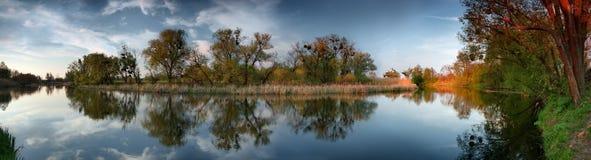 Árboles en el río Foto de archivo libre de regalías