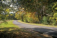 Árboles en línea de color del otoño un camino estrecho cerca de Woodstock, Nueva York Fotos de archivo