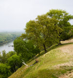 Árboles en la batería de río escarpada Foto de archivo