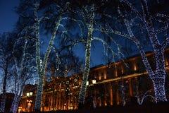Árboles en la calle de Moscú, adornada con las guirnaldas del Año Nuevo Imagenes de archivo